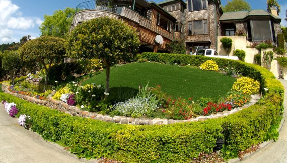 Artificial lawn surrounded by colorful landscape