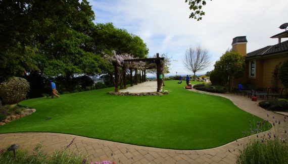 Artificial lawn with a pergola in the middle