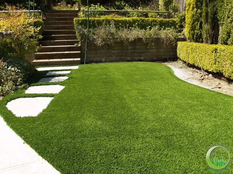 Swimming Pool Artificial Turf : Synthetic grass around a swimming pool in novato