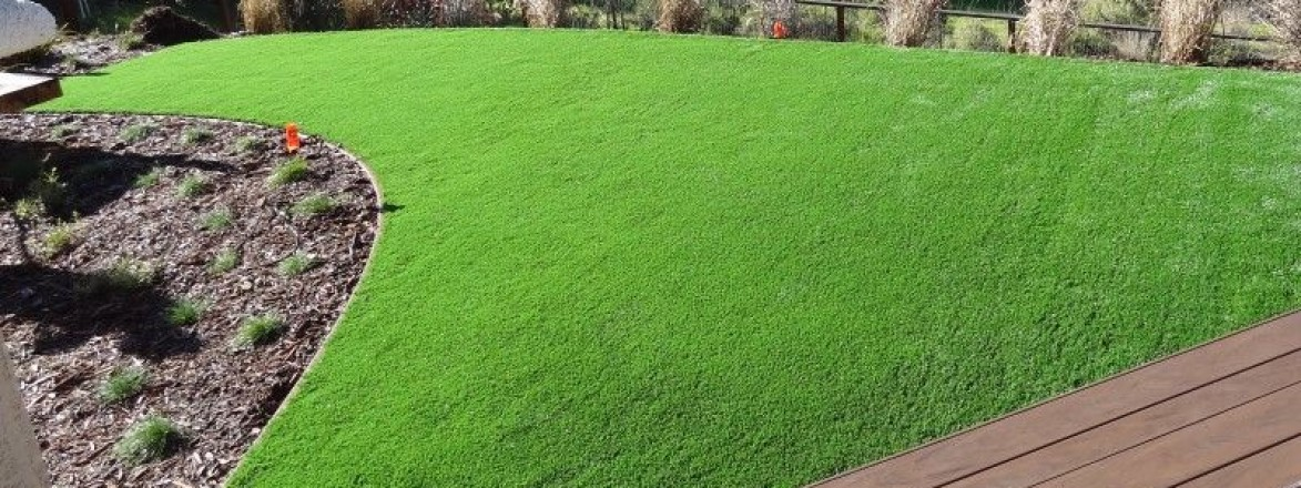 Odd shape lawn in the backyard in Novato, California
