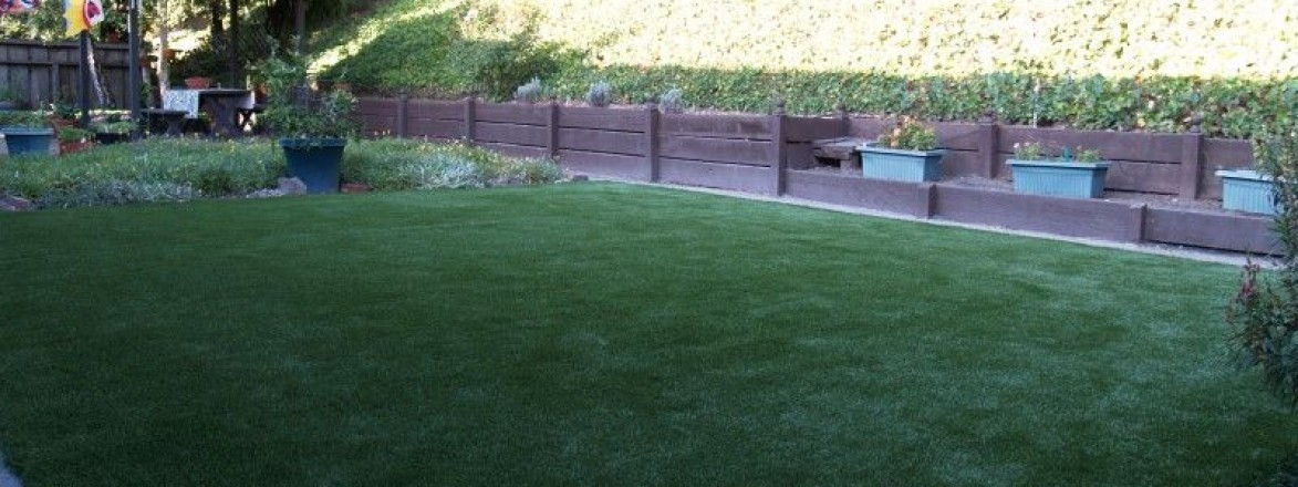 Synthetic turf & sod in a backyard (after)