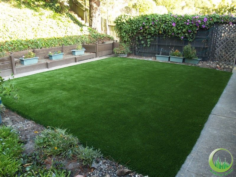 Backyard Turf Grass :  backyard of San Rafael, California  Synthetic & Artificial Grass in