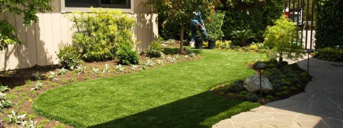Artificial turf & sod in a backyard in Bay Area