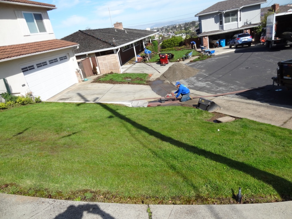 front yard and backyard in san francisco california synthetic