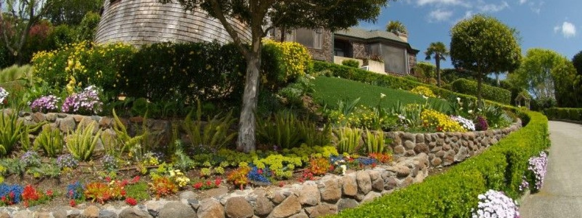 Artificial Synthetic Grass Belvedere-Tiburon