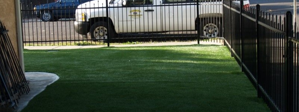 Redwood City Synthetic Grass Front Yard Synthetic