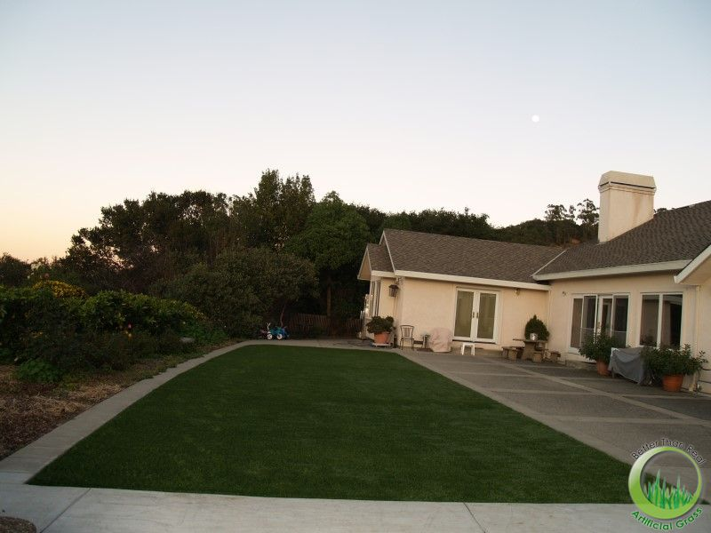 San Rafael Synthetic Grass Backyard