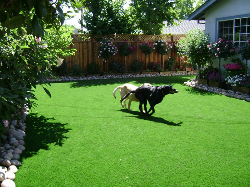 Dog Run Ideas Awesome Dog Run Ideas How To Build A