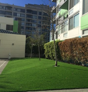 Artificial Grass for office buildings