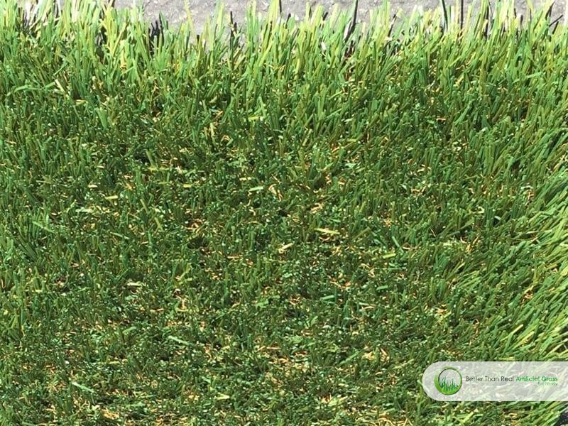 how to get rid of fescue grass