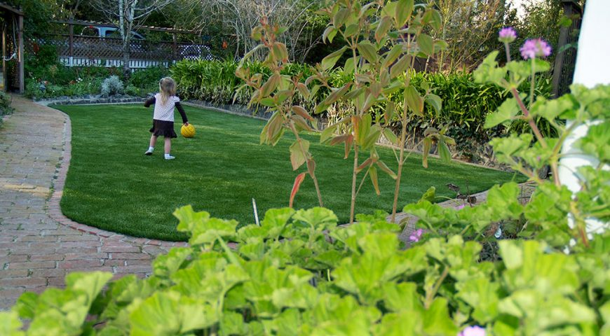 Synthetic grass for our garden and backyards in San Jose