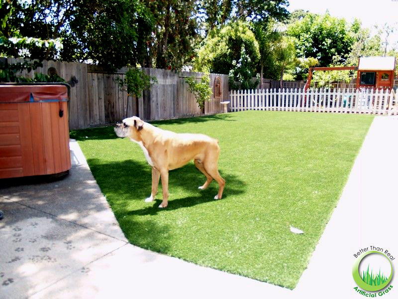 Artificial synthetic dog running area installed in a backyard in Novato