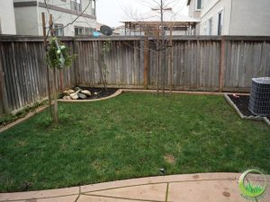 Backyard with a concrete patio (before)