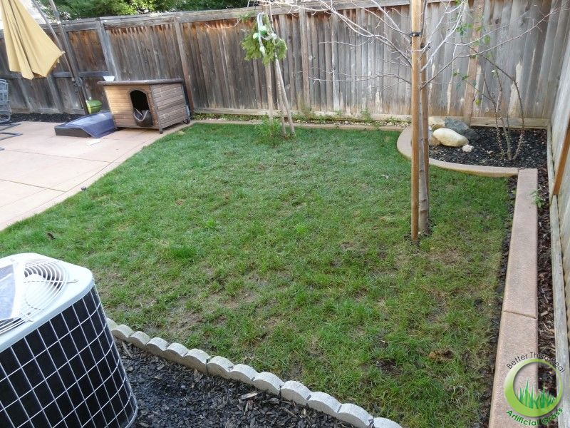 Backyard with a concrete patio in Fairfield, California ... on Backyard Ideas Concrete And Grass id=16229