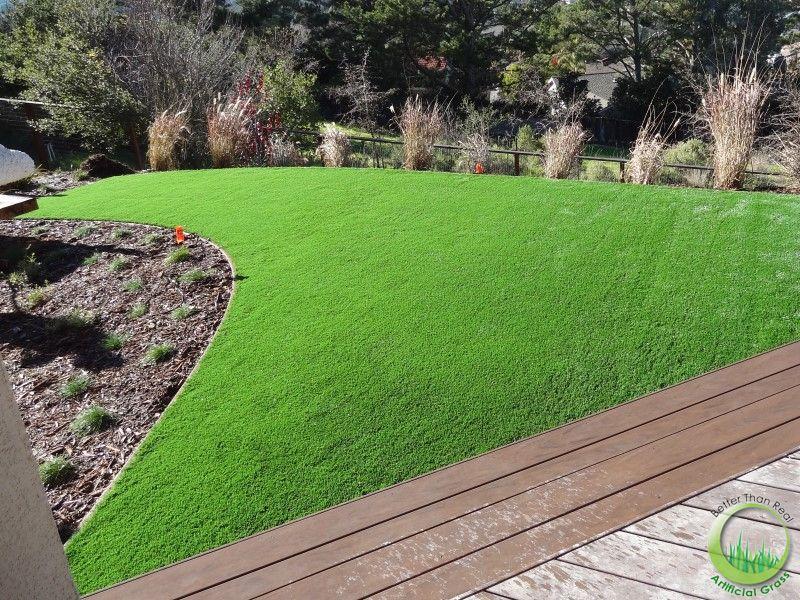 Odd shape lawn in the backyard in Novato, California