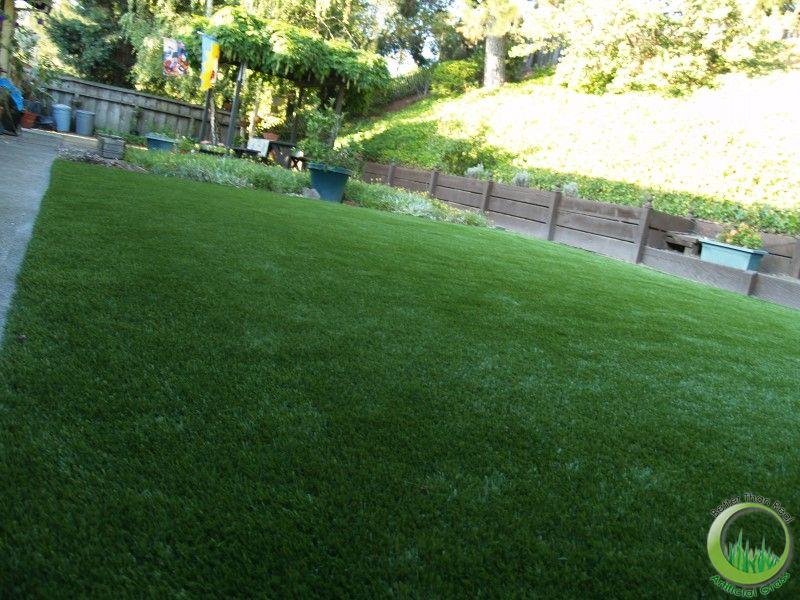 Synthetic turf & sod in a backyard of San Rafael ...