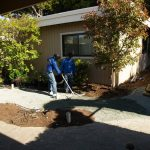Artificial turf & sod in a backyard in Bay Area (before)
