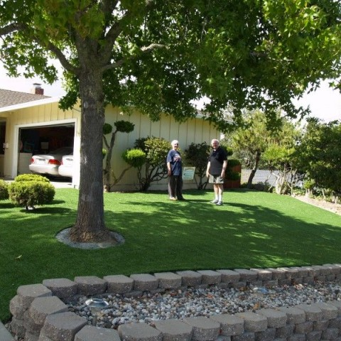 Artificial Grass Front Lawn Novato California