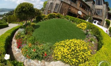 Artificial Synthetic Grass Belvedere Tiburon