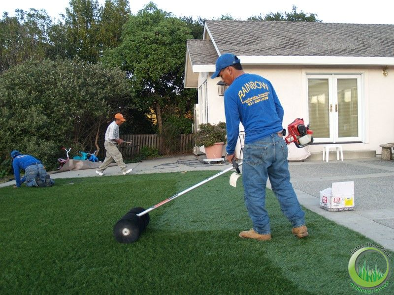 Synthetic Turf Sod In A Backyard Of San Rafael California
