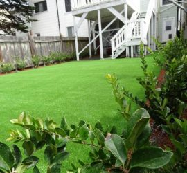 Artificial Artificial Grass Lawns