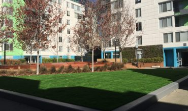 Artificial Grass for an Apartments Complex