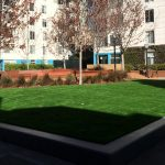 Artificial grass for corporate campuses