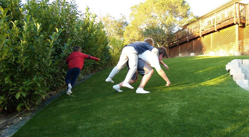 Artificial grass in San Jose CA