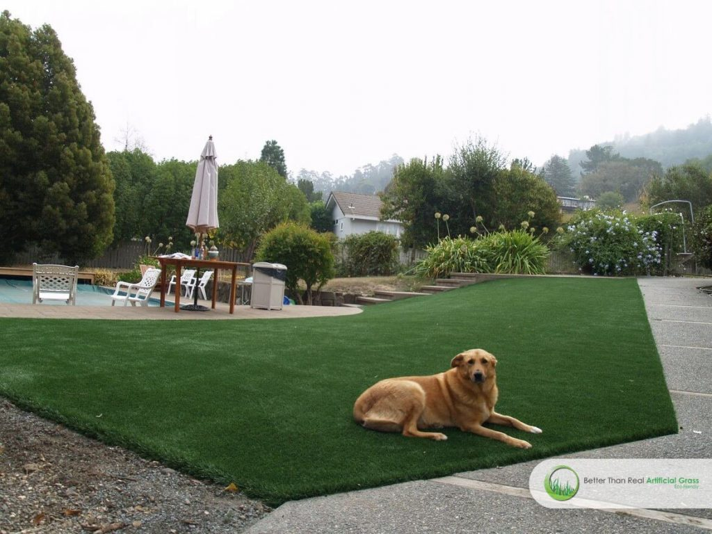 Artificial Grass Dog Run Installation Projetcs In California