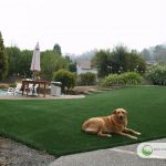 Artificial Grass Dog Run Installation