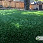 Artificial grass installations in Santa Clara