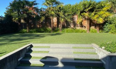 Artificial Grass in Mill Valley, California