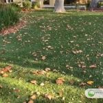 Hillsborough, California project… 4 years later!
