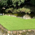 Commercial grass installation for medical centers