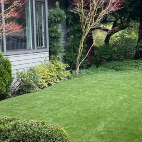Synthetic turf installation for front yard in San Francisco, California