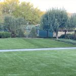 4 Reasons to Install Artificial Grass in Green Areas