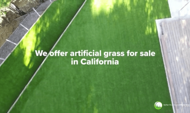 Artificial Grass For Sale: Request Your Free Sample Today!