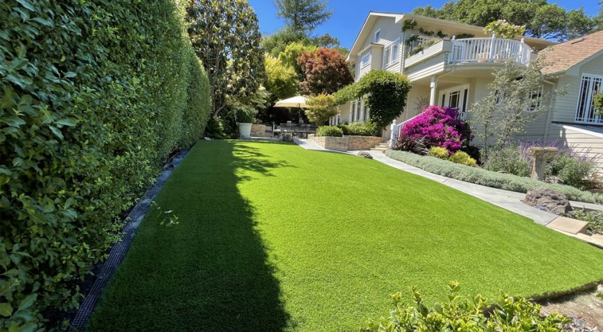 The Best Artificial Grass for Your Pets in the Burlingame, California, Area